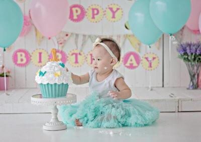 Bluish Pinkish Cake Smash Theme
